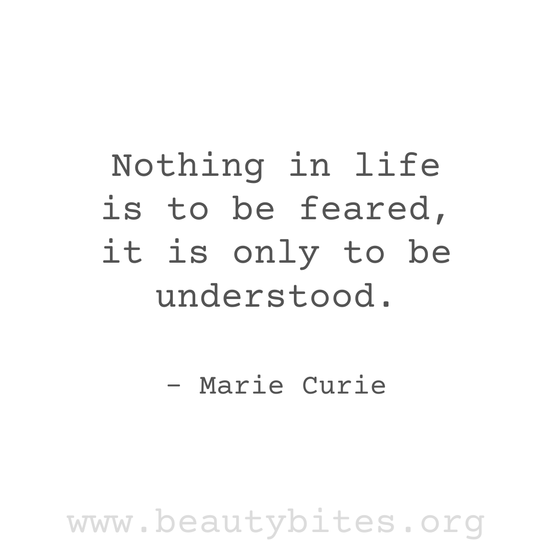 Nothing In Life Is To Be Feared, it is only to be understood. Marie Curie quotes about fear