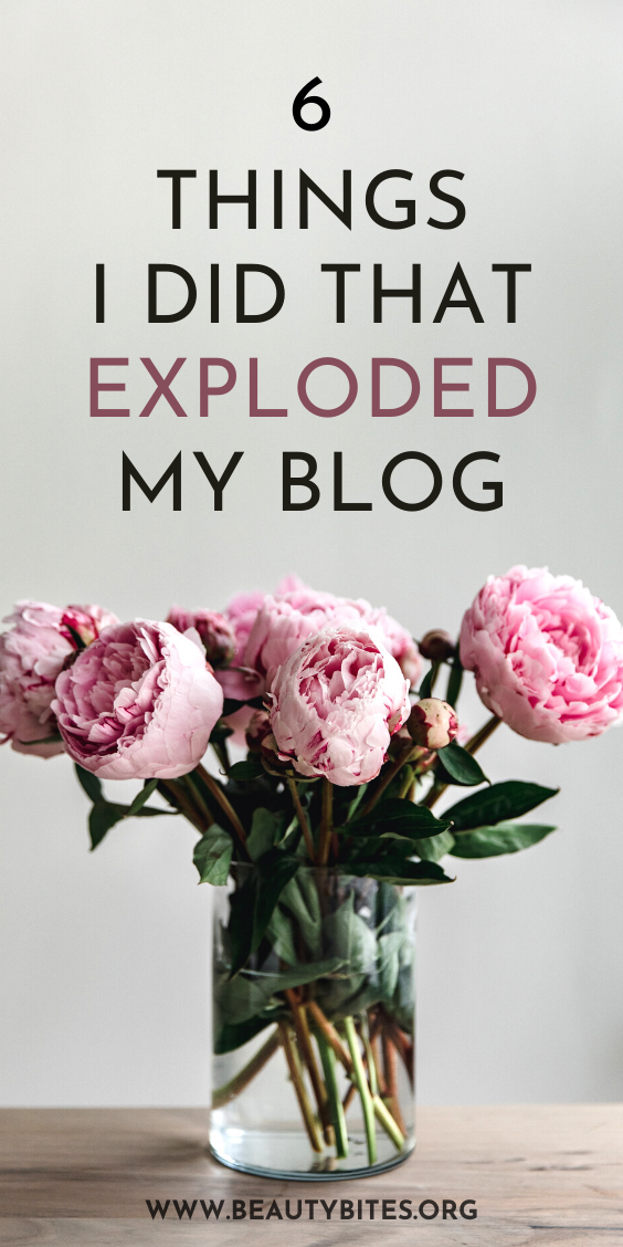 The 6 things I did that exploded my blog! You need these beginner blogging tips and blogging ideas if you're a newbie trying to grow your blog traffic and to reach a bigger audience. This is a small blogging for beginners guide that will show you what you can do when you're first starting out and what can happen within just a few months.